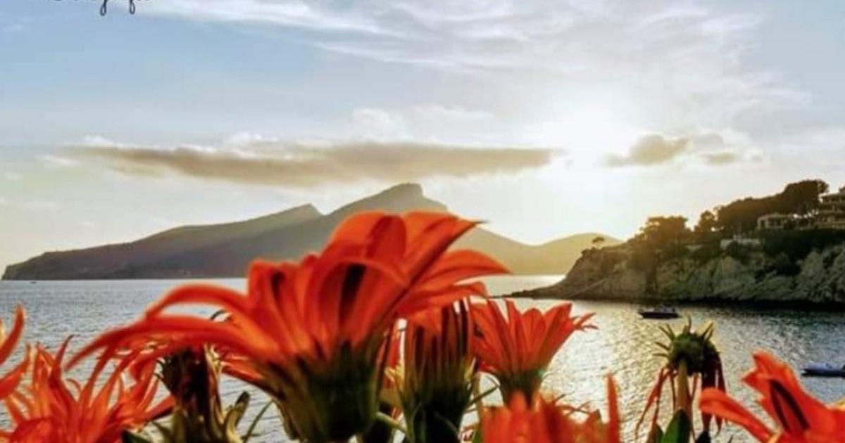 Mallorca ist beliebte Ferieninsel für viele Urlauber