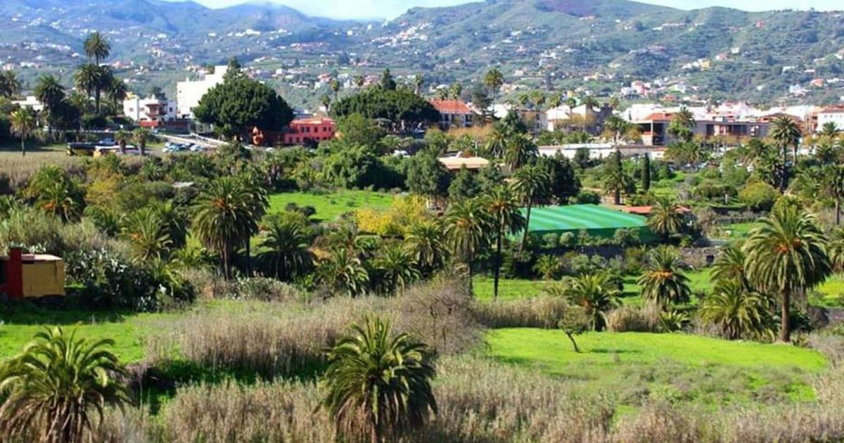 Cran Canaria zählt zu den beliebten europäischen Reisezielen