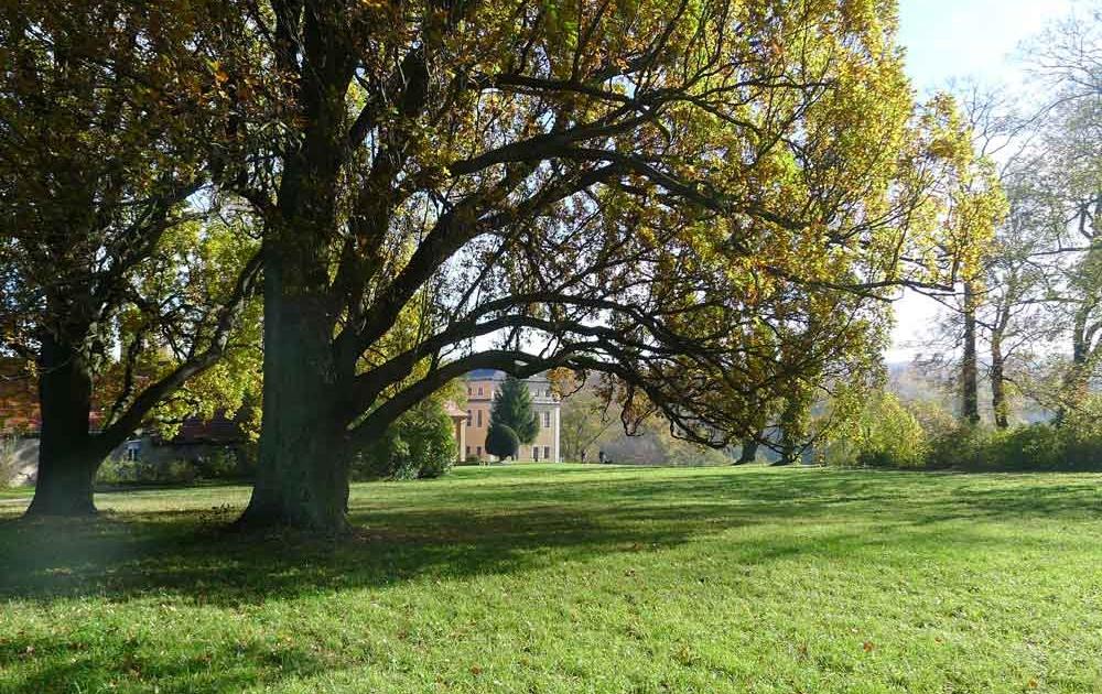 Parkanlagen von Schloss Ettersburg laden zum flanieren ein