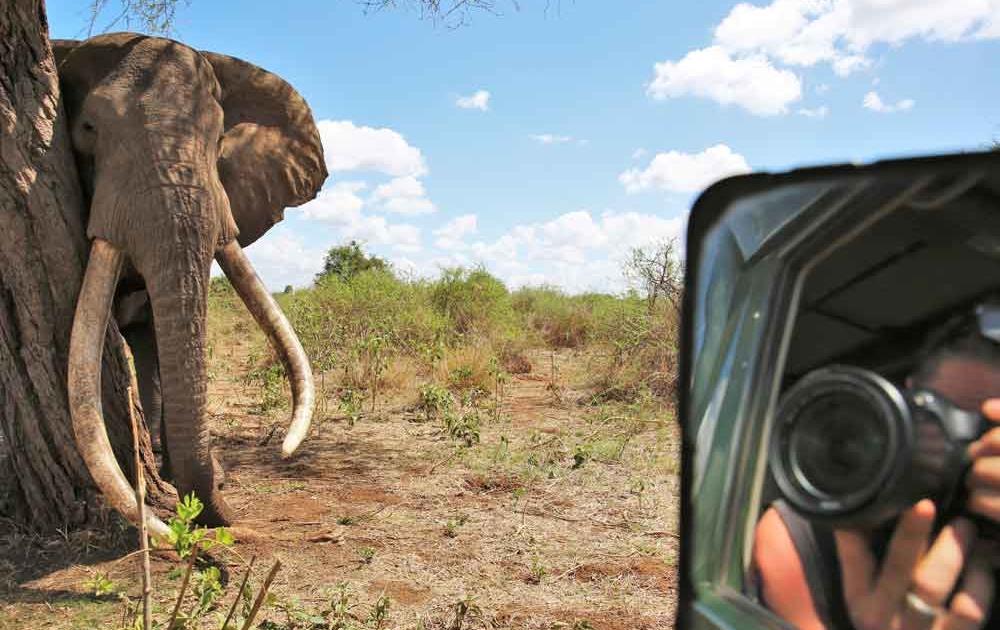 In Afrika Remote arbeiten