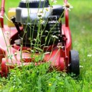 Rasenmäher kaufen - Ratgeber zum Kauf eines Rasenmähers