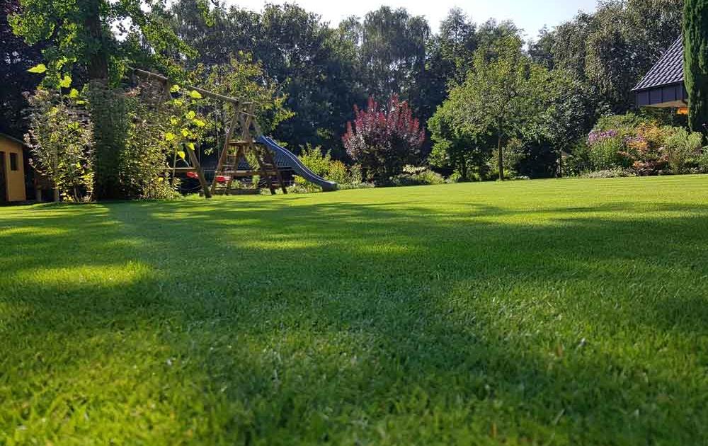 Rasenpflege für einen perfekten englischen Rasen